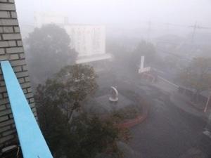 未来は霧の中に